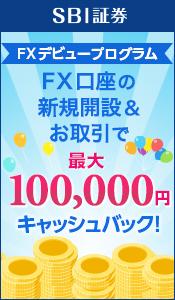 FXデビュープログラム FX口座の新規開設&お取引で最大100,000円キャッシュバック