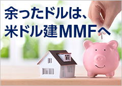 余ったドルは、米ドル建MMFへ
