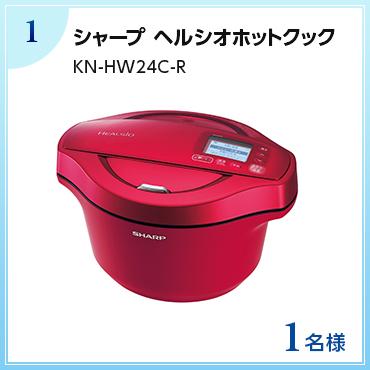 【1名様】シャープ ヘルシオホットクック KN-HW24C-R