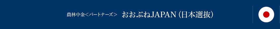 農林中金<パートナーズ> おおぶねJAPAN(日本選抜)