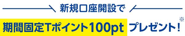 新規口座開設で期間固定Tポイント100ptプレゼント!